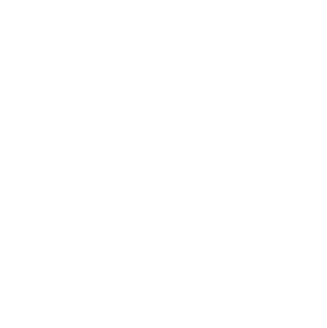 icon-design-white.png